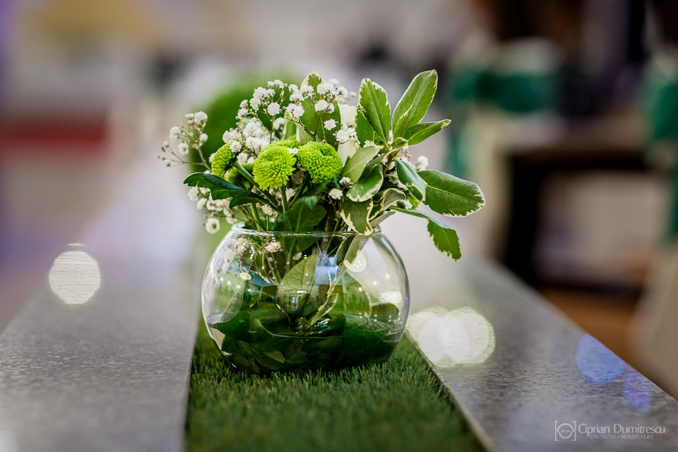 0667-Fotografie-nunta-Andreea-Ionut-fotograf-Ciprian-Dumitrescu