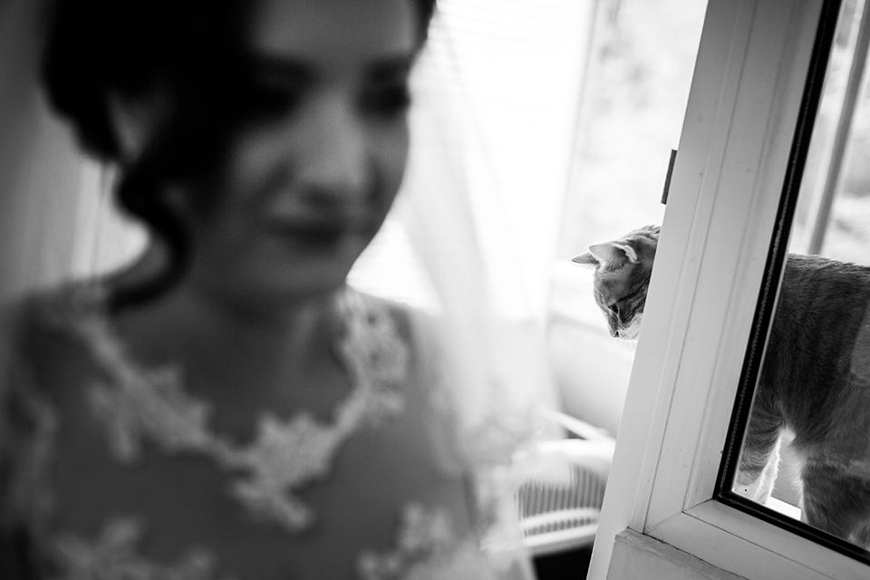 0121-Fotografie-nunta-Ruxandra-Cristi-fotograf-Ciprian-Dumitrescu-DC1X3725