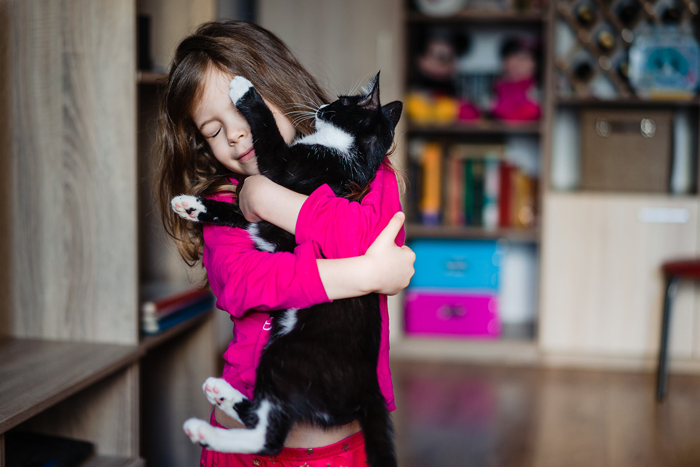 Dragoste de pisica- jurnal de familie